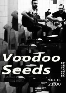 ArtCafe Barakah - koncert (Voodoo Seeds)__plakat
