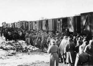 Transport jeńców sowieckich poprzybyciu dopunktu zbornego, 3 XI 1941, fot.Bauer (fotografia przesłana przezOrganizatora)