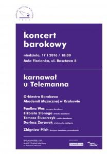 barokowa-pilch-17-I-2016B